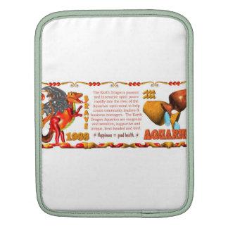 Valxart 1988 2048 EarthDragon zodiac Aquarius Sleeves For iPads