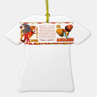 Valxart 1988 2048 EarthDragon zodiac Aquarius Christmas Ornaments