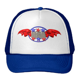 ValxArt flying USA with red Wings and stars Cap