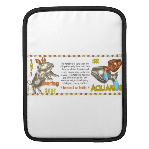 Valxart's 1971 2031 MetalPig zodiac born Aquarius iPad Sleeve