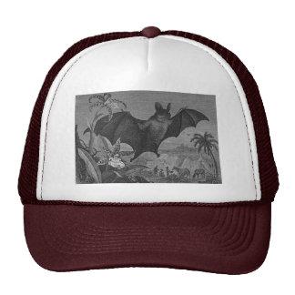 Vampire Bat Lithograph Faded Hats