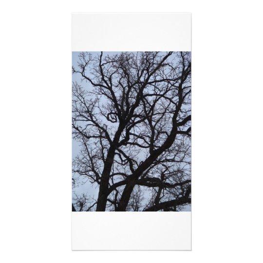 Vampire Tree Customised Photo Card