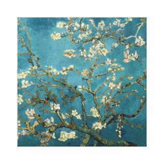 Van Gogh Almond Blossom Canvas Print