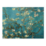 Van Gogh Almond Branches In Bloom Postcards