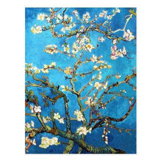 Van Gogh Almond Branches Post-Impressionism Postcard
