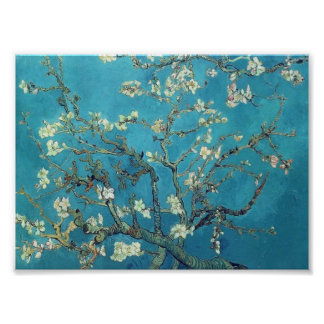Van Gogh - Branches with Almond Blossom Poster