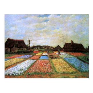 Van Gogh Bulb Fields Holland (F186) Fine Art Postcard