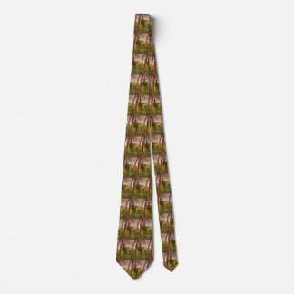 Van Gogh Garden of Saint Paul Hospital, Fine Art Tie