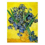 Van Gogh Irises Postcard