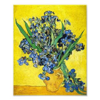 Van Gogh Irises Print Photograph