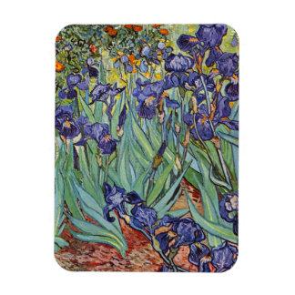 Van Gogh Irises Rectangular Photo Magnet