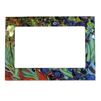 Van Gogh Irises, Vintage Garden Fine Art Frame Magnet