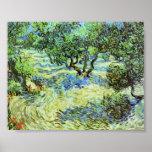 Van Gogh - Olive Grove - Bright Blue Sky