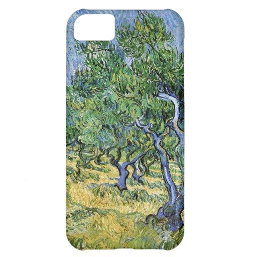 Van Gogh Olive Grove iPhone 5C Covers