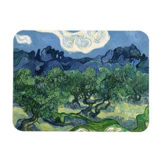 Van Gogh   Olive Trees   1889 Rectangular Photo Magnet