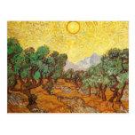 Van Gogh Olive Trees Yellow Sky & Sun Post Cards