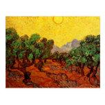 Van Gogh Olive Trees Yellow Sky Sun, Vintage Art Post Cards