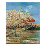 Van Gogh - Orchard In Blossom Print