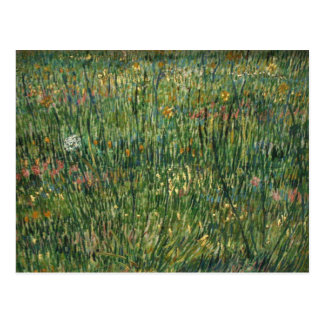 van gogh - patch of grass postcard