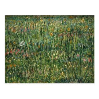 van gogh - patch of grass postcard