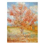 Van Gogh Pink Peach Tree in Blossom Postcard