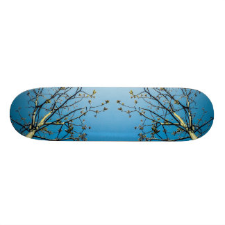 Van Gogh Style 18.1 Cm Old School Skateboard Deck