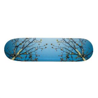 Van Gogh Style Skateboard