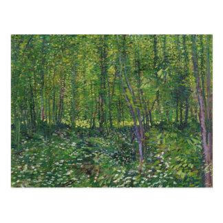 Van Gogh Trees and Undergrowth 2015 Calendar Postcard