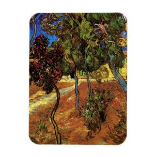 Van Gogh Trees in the Garden, Saint Paul Hospital Rectangular Magnets