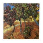 Van Gogh Trees in the Garden, Saint-Paul Hospital Ceramic Tile