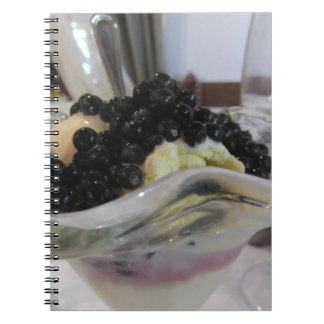 Vanilla ice cream with uncultivated bilberries notebook