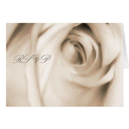 vanilla rose  RSVP card