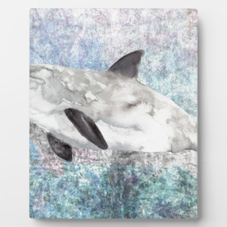 Vaquita River Dolphin Endangered Animal Painting Display Plaques