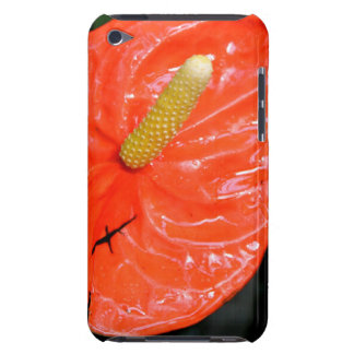 Variegated Chinese Lantern Case-Mate iPod Touch Barely There iPod Case