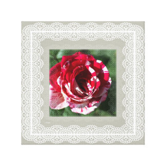 Variegated Country Rose Wall Art by Joy Watson Gallery Wrapped Canvas