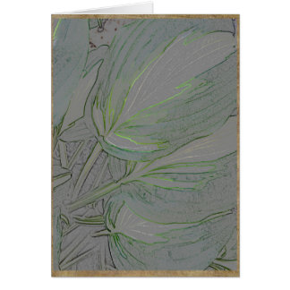 Variegated hosta leaves card