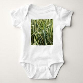 Variegated Sedge Grass Baby Bodysuit