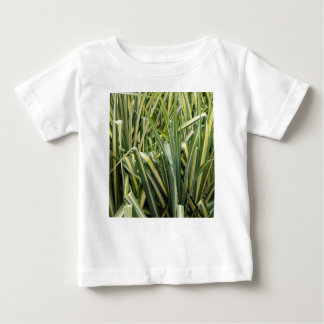 Variegated Sedge Grass Baby T-Shirt
