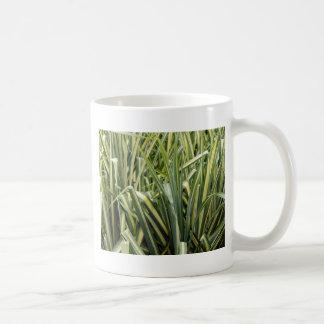 Variegated Sedge Grass Coffee Mug