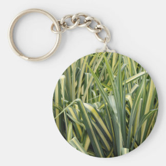 Variegated Sedge Grass Key Ring