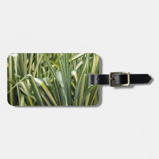 Variegated Sedge Grass Luggage Tag