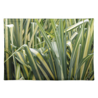 Variegated Sedge Grass Placemat