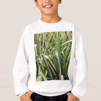 Variegated Sedge Grass Sweatshirt