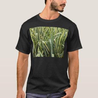 Variegated Sedge Grass T-Shirt