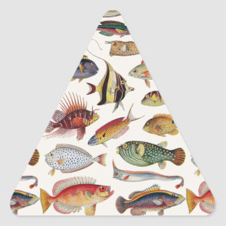 Varieties of Fish Triangle Stickers