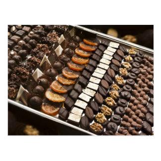 Variety of Artisanal Chocolate Pralines Postcard