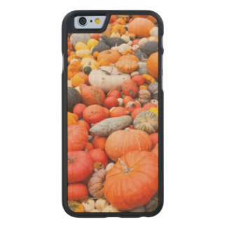 Variety of squash for sale, Germany Carved Maple iPhone 6 Case