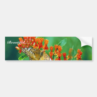 Varigated fritillary on Butterfly weed Bumper Sticker