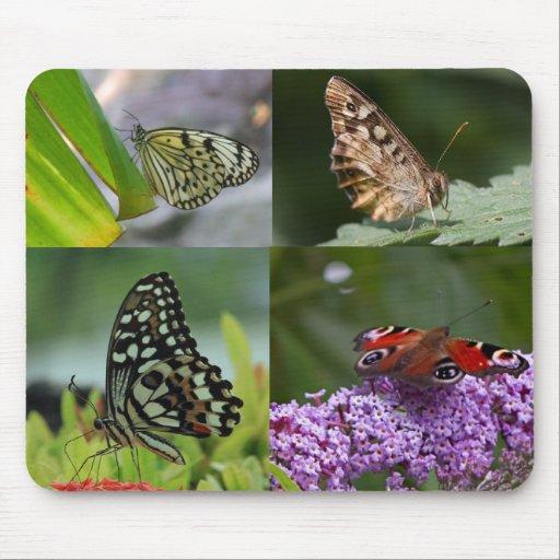 Various Butterflies Mousepad
