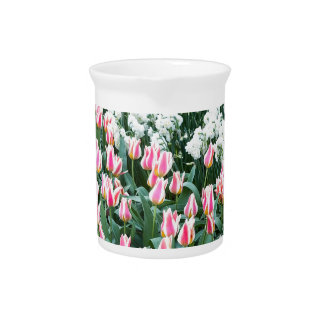 Various red tulips and white daffodils beverage pitcher